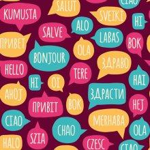 Idioma de París