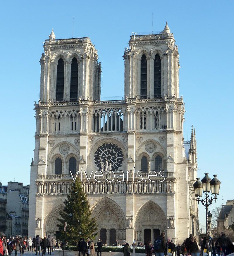 Catedral De Notre Dame La Catedral G 243 Tica De Par 237 S Vive Par 237 S