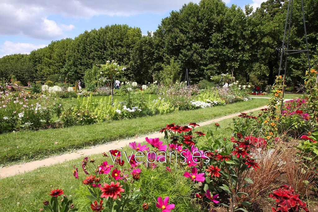 Jardin des plantes grandes jardines reales de par s vive for Plantes fleuries de jardin